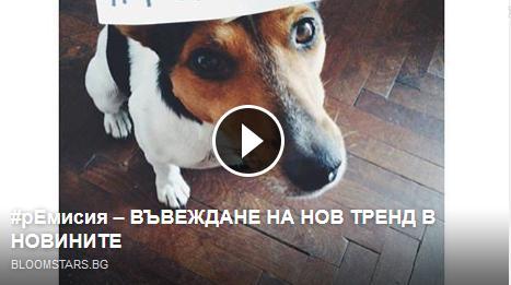 ремисия, Петър Нефтелимов, мода, тренд